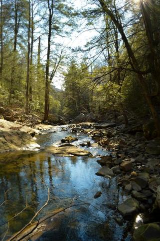 Chattanooga, TN, Rainbow Lake, hiking