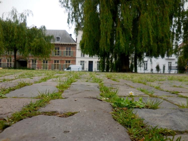 Belgium cobblestone street